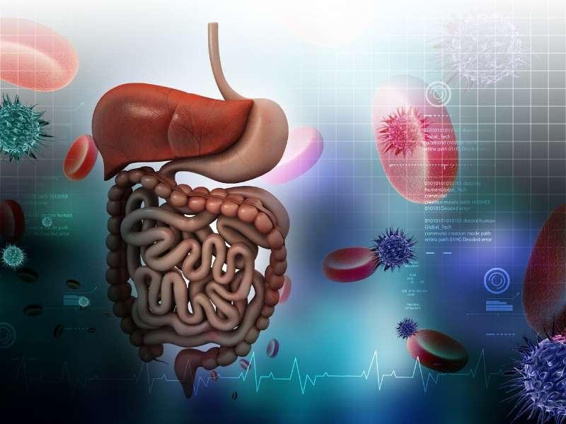 Bacillus Indicus Probiotic